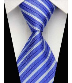 Man's Silk Polyester Tie Option 9