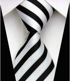 Man's Silk Polyester Tie Option 11