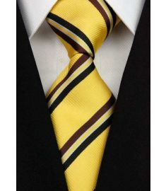 Elegant Silk Polyester Man Business Wedding  Tie Option 3