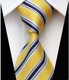 Elegant Silk Polyester Man Business Wedding  Tie Option 9